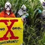 ГМО в Италии
