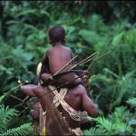 Древние леса Папуа - Новой Гвинеи