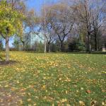 Осень в парке Ниагарского водопада